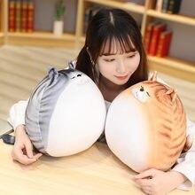 Kawaii Плюшевые игрушки плюшевый Кот кукла яйцо Подушка Мягкие