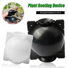 Creative Plant Rooting Device…