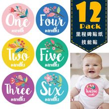Get more info on the First Year Baby Monthly Milestone Photo Sharing Baby Belly Stickers Birth to 12 Months and 8 Bonus Achievement Stickers E65D