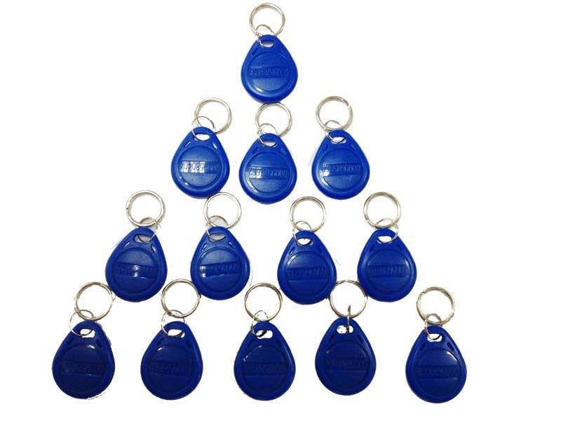 50/100pcs Blue RFID 125 Khz EM4100 Key Tag Keyfobs Ring Chip Keytab TK4100 Tags 125khz Read Only