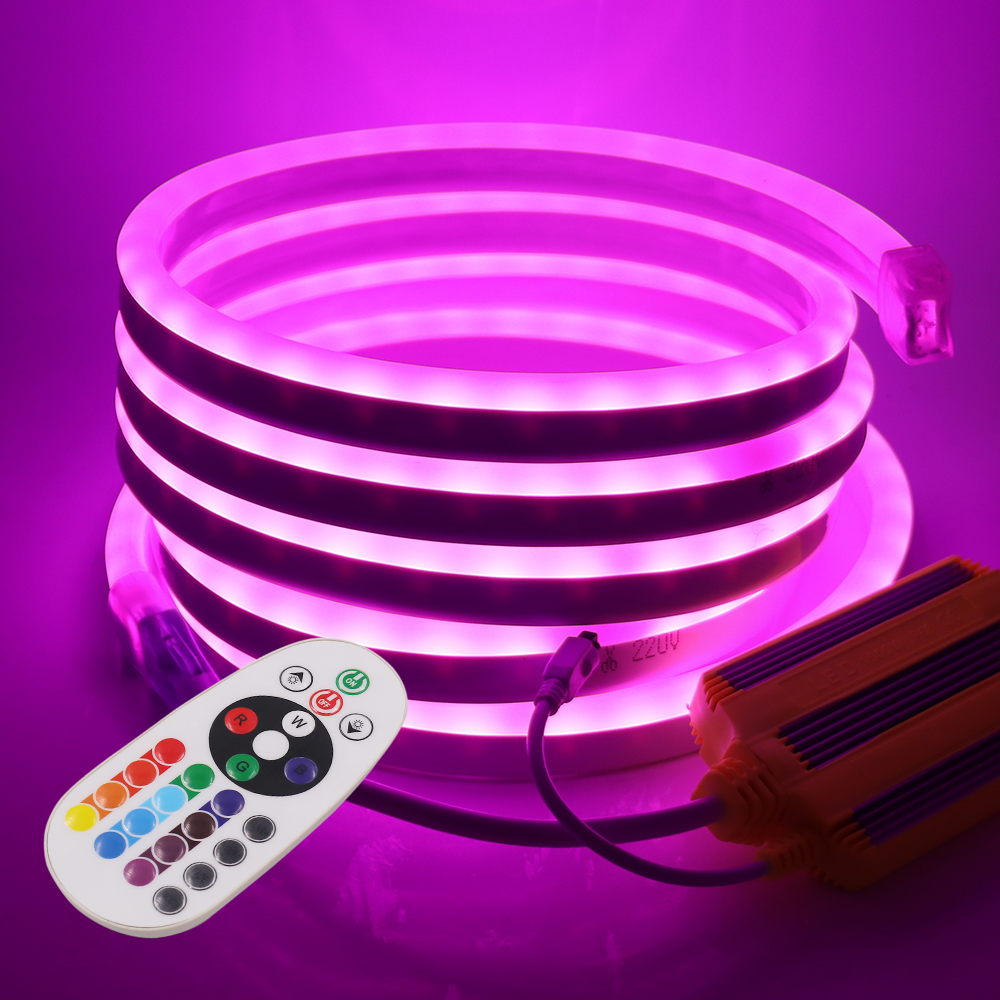 220V RGB Neon Strip LED Light 5050 24key Remote Control 1500W Controller Rope Light Waterproof Flexible Tape Outdoor Decoration