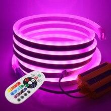 Tira de luces LED de neón RGB, 220V, mando a distancia de 24 teclas, 5050 W, cinta Flexible impermeable para decoración de exteriores