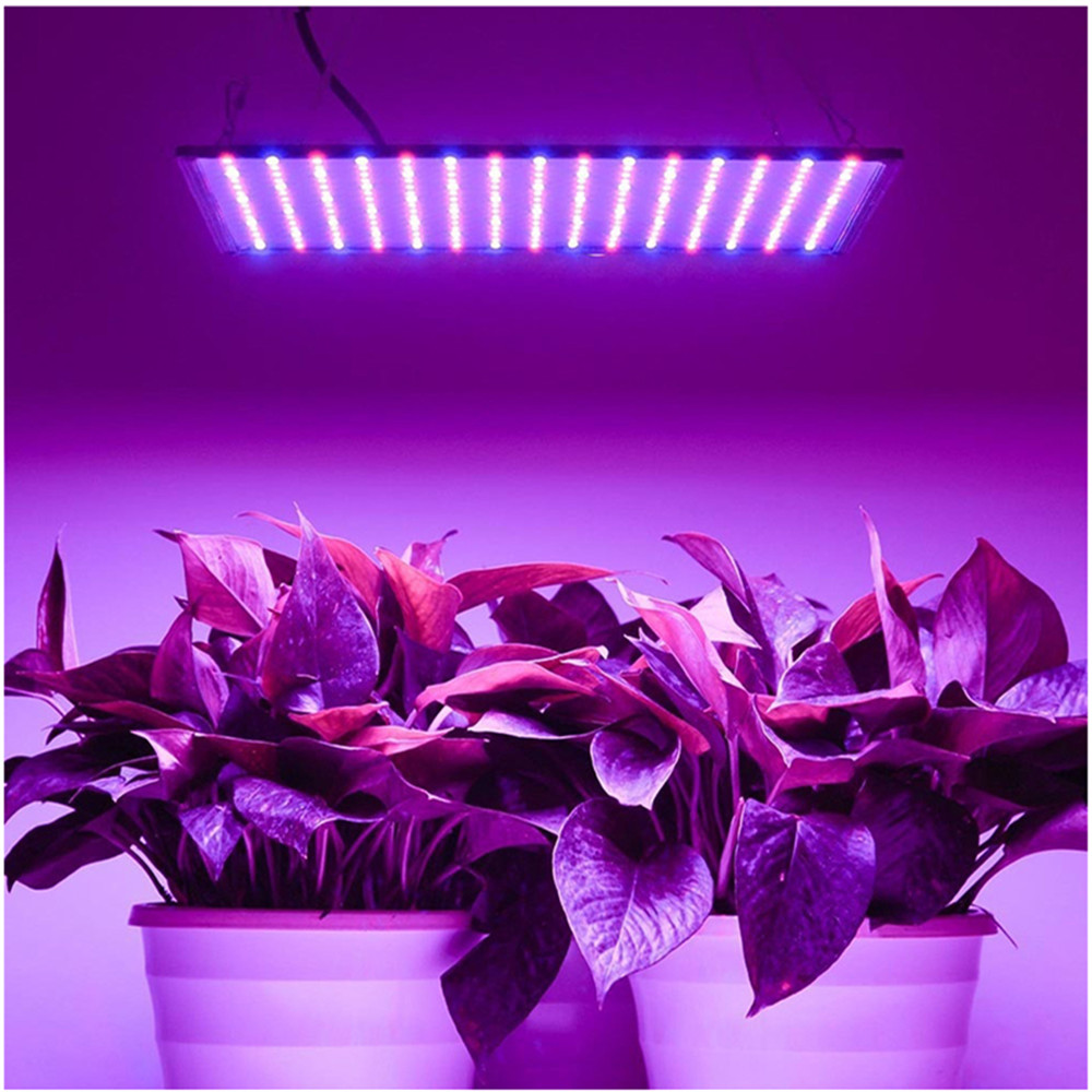 Full Spectrum 1000W Led Grow Light Growing Lamps 225Pcs Leds Plant Lighting Veg/Bloom State For Indoor Plants Flowers Seedling
