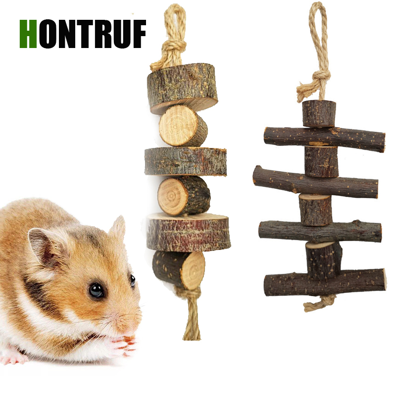 Dry Apple Tree Branches Pet Molar Toy Totoro Chinchilla Rabbit Hamster Bite String Small Pet Supplies