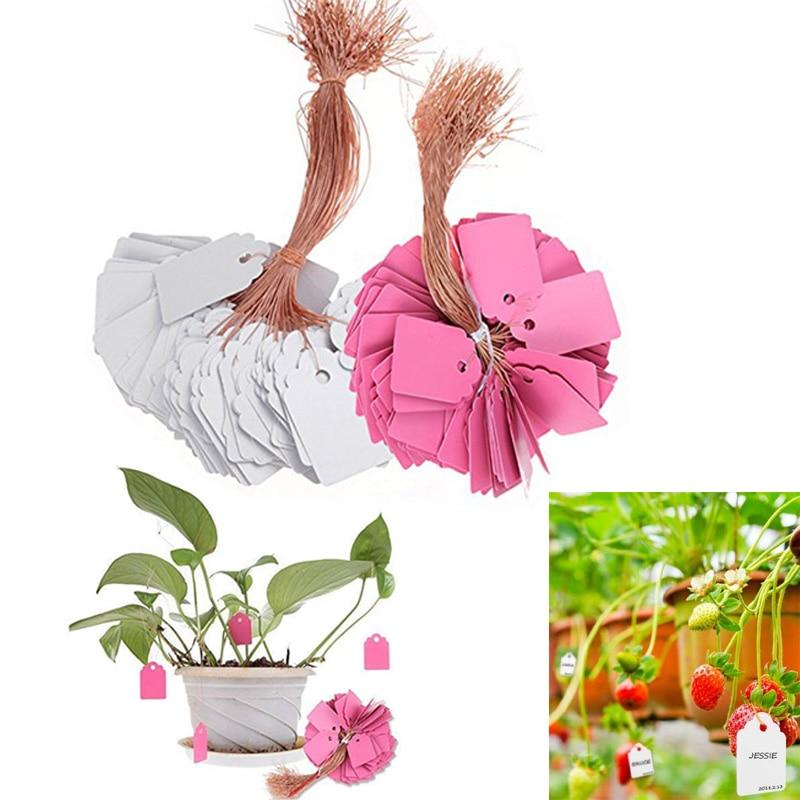 100Pcs/lot Plants Hang Tag Labels Reusable Garden Marker Flower Pot Plastic Tags Hangting PVC Garden Tools Greenhouse Supplies|Nursery Pots| |  - title=