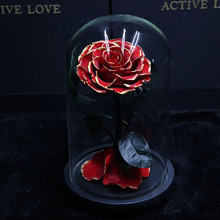 Eternal Rose Beauty And The Beast Galaxy Rose Dry Flower Teak On Head Glass Dome Wooden Base for Bedroom Decor Mothers Day Gift red rose with fallen petals in a glass dome on a wooden base birthday gift beauty