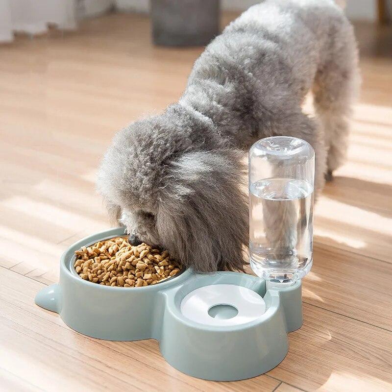 Ciotola per gatti ciotola per cani bevitore per gatti distributore di acqua cane da compagnia ciotola per alimenti per gatti contenitore per alimenti per cuccioli con irrigatore alimentatore per animali domestici 1