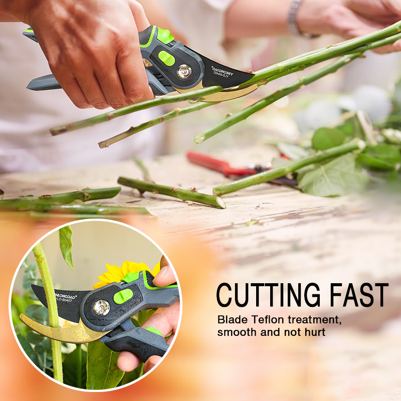 DTBD Time Saving Gardening Scissor as Hand Pruning Shears for Orchard Tree and Fruit Tree 5