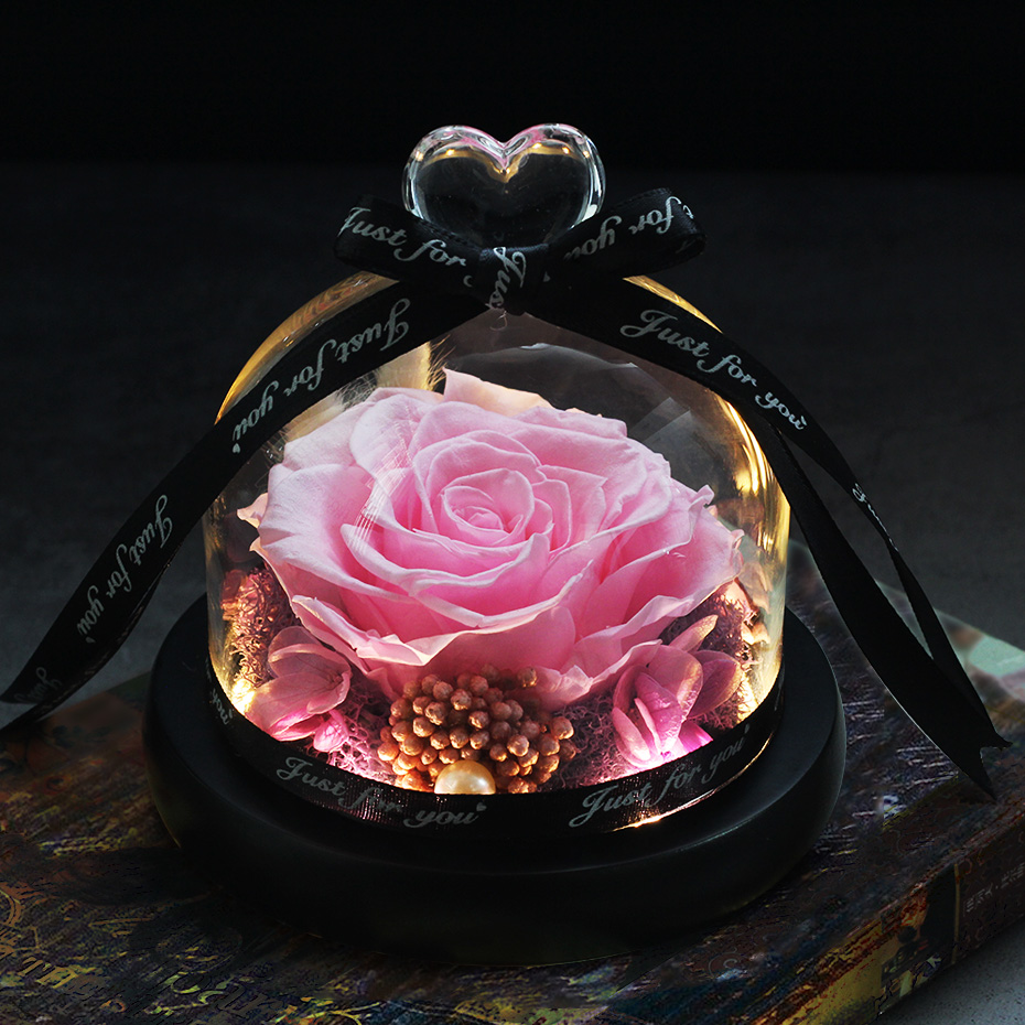 Forever Eternal Real Preserved Single Rainbow Rose Glass Dome Beauty /& Beast