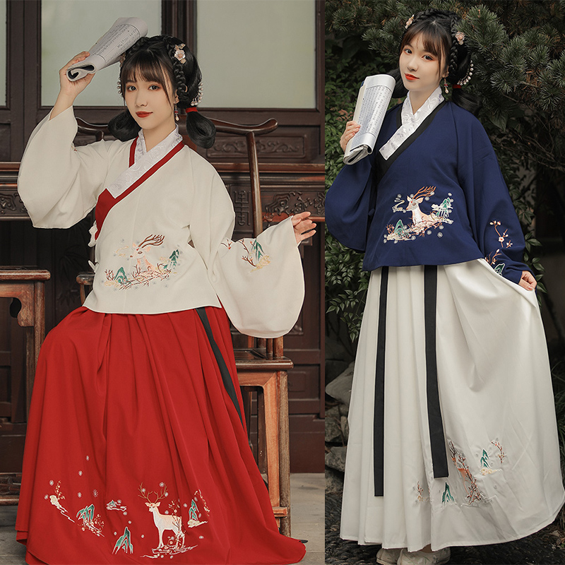 Tradition Chinese Hanfu Dress Women Pipa Sleeved Embroidery Hanfu Skirt Chinese Hanfu Girl Performance Cosplay Costume DL5360