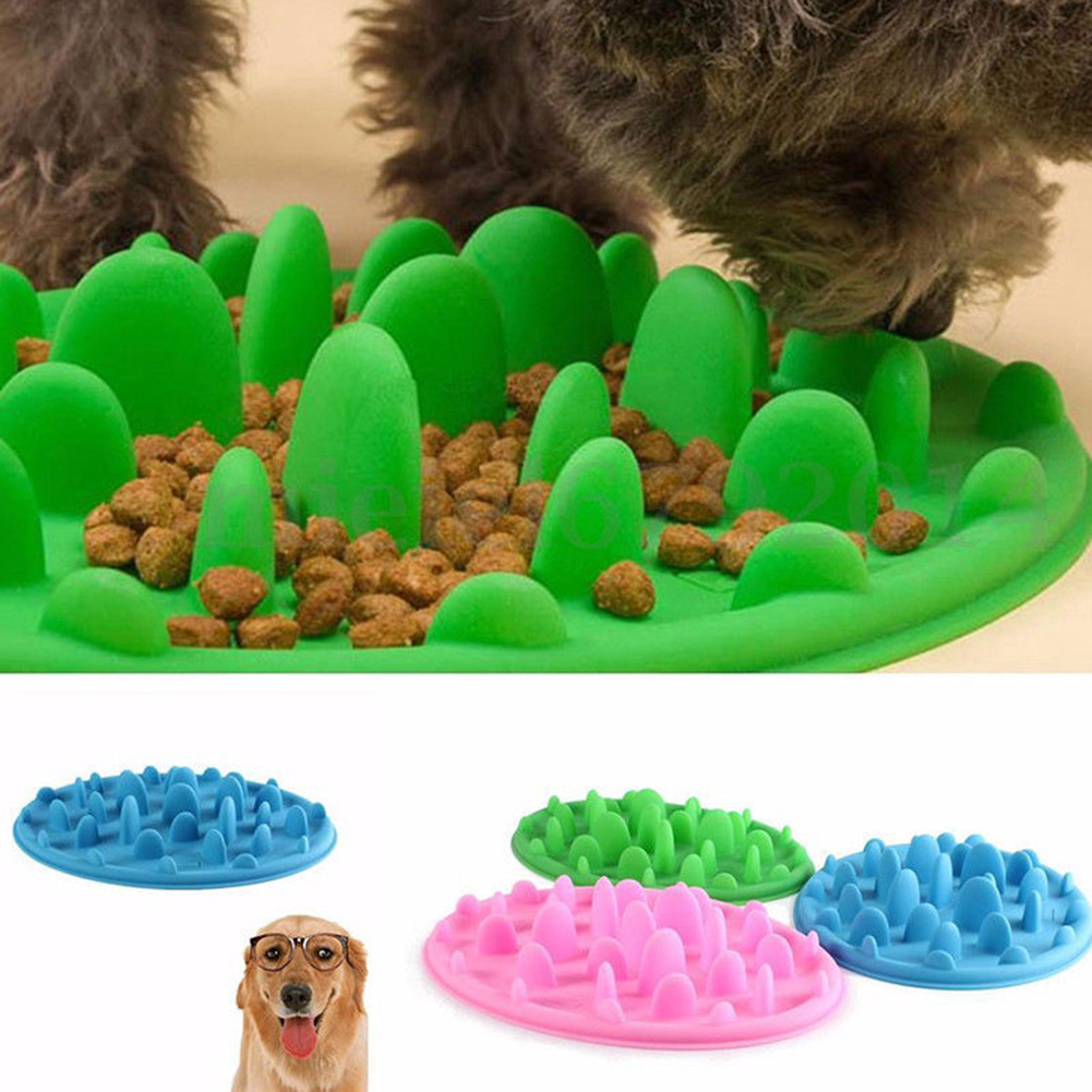 Pet Supplies Pet Dog Feeding Food Dish Bowl Silicone Puppy Slow Down Eating Feeder Dish For Dogs Supplies Cat Bowl