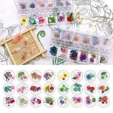 12 ячеек/коробок прозрачный эпоксидный наполнитель сухой цветок