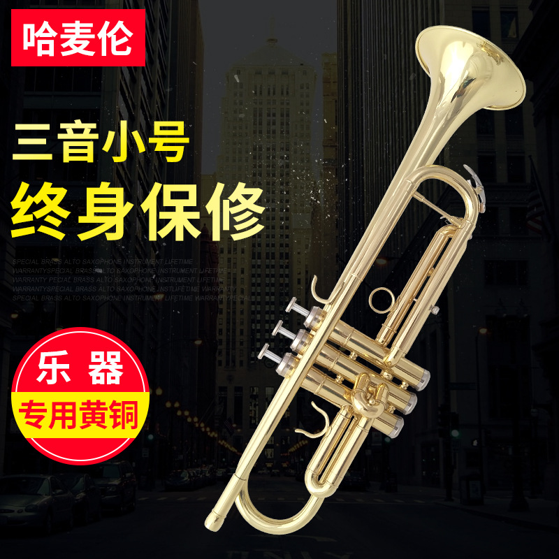 Hameron Small Copper Tube Western Musical Instrument B Flat Three tone Trumpet Beginners Playing Electrophoresis Gold Three tone in Trumpet from Sports Entertainment