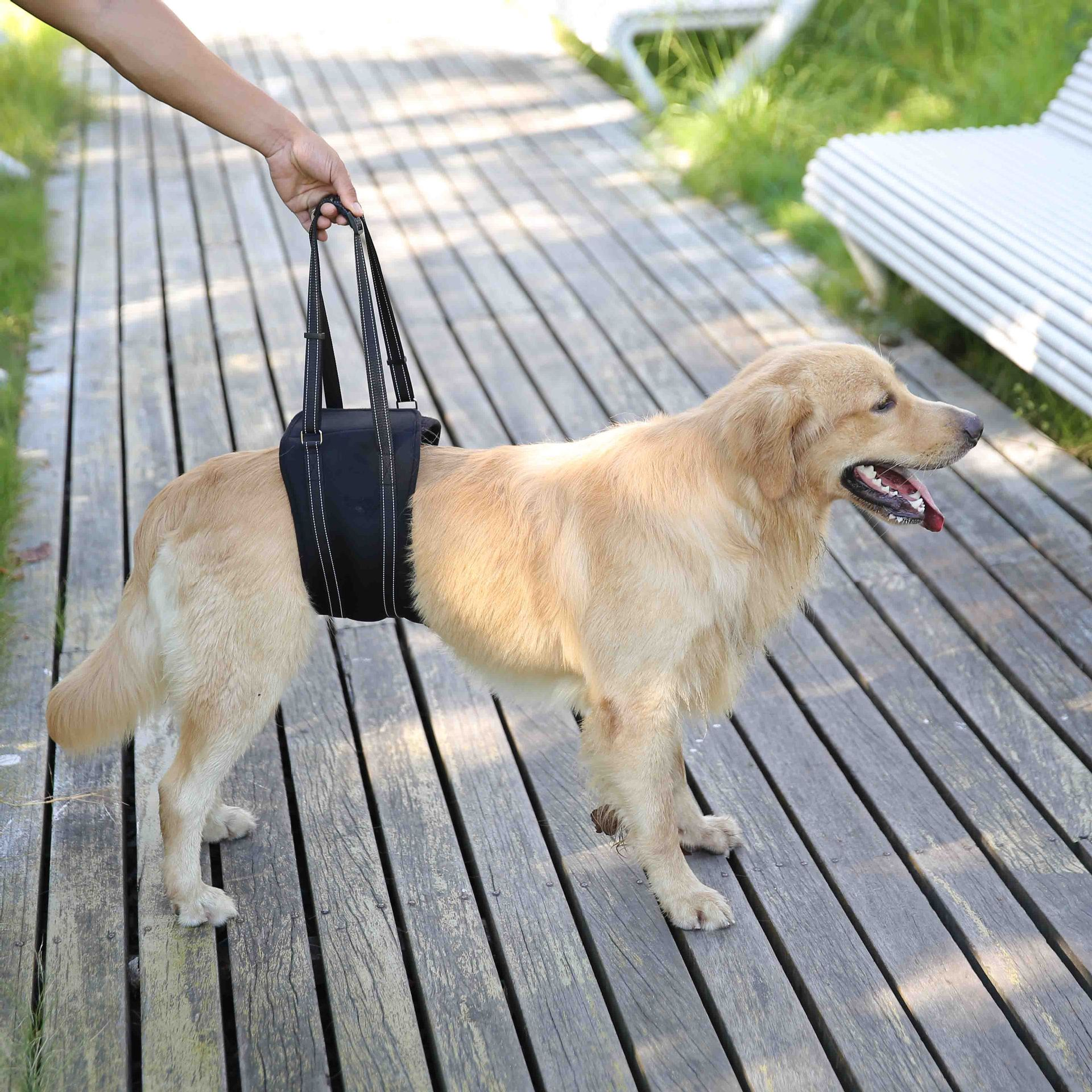 Elderly People With Disabilities Pet Dog Downstairs Auxiliary Walking Suspender Strap