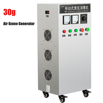 30g Air Ozone Generator Small Home Ozonator Ozone Water Purifier Treatment Ozone Disinfection Equipment Disinfector 110V / 220V 220v household ozone disinfection disinfector ozone generator air purifier