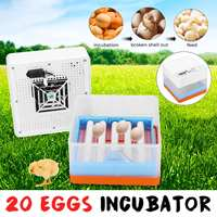 Intelligent Full automatic Egg Incubator Hatcher 20 Eggs Electronic Hatching Machine For Chicken Duck Transparent EU Plug