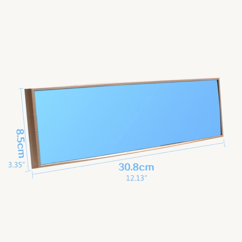Panoramic RearViewer