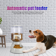 Pets Cats Dogs Automatic Waterer Dispenser and Food Feeder 3.8 L for Animals Pet Supplies
