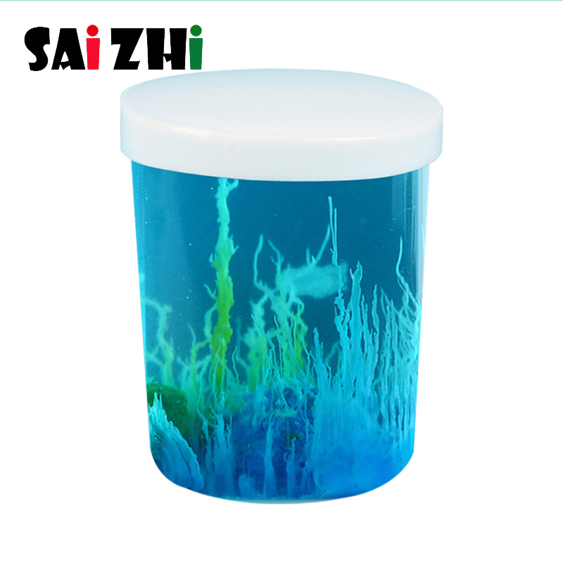 Saizhi Diy Water Garden Science Technology Small Production Chemistry Experiment Set DIY Kids Project Experiment Education Toys
