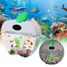 1.5L Mini Fish Tank Nano Aquarium With Clock USB LED Lighting System Portable Office Acrylic D20