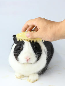 Comb Cleaner Massage-Brush Dog Cat Silicone Bristles Puppy-Wash-Tools Quickly-Cleaing-Brush