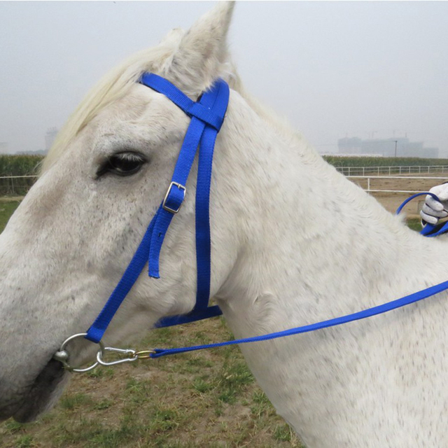 Horse Bridle Rein Headstall Thickened Halter Equestrian Accessories With Removable Snaffle  19