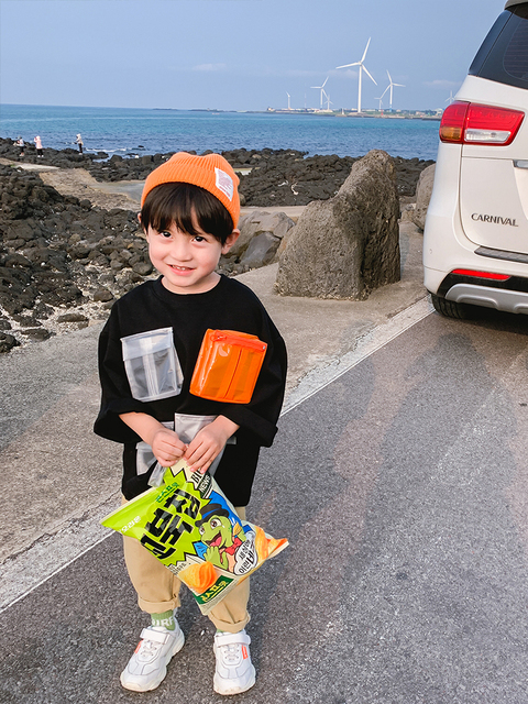 Boys Sweater Pullover Children New Children's Clothing Baby Autumn Korean Version of the Top Children Western Style Spring 2