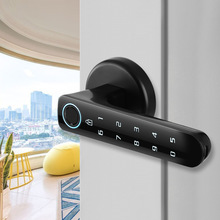 Fingerprint password Lock Electric biometrics Door Lock for indoor wooden door
