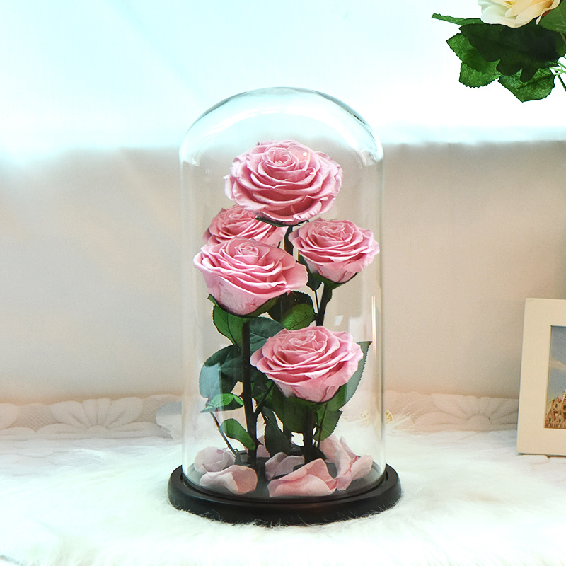 Image 4 - New Arrival Eternal Preserved Rose with Glass Dome 5 Flower Heads Rose Forever Love Wedding Favor Party Gifts for WomenArtificial & Dried Flowers   -