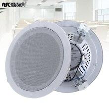 2Pcs 6 Inch 15W ASK-630 Fashion Metal Microphone Input USB M
