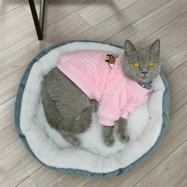 Roupas do gato do cão do velo camisola casaco macacão para yorkshire terriers chihuahua trajes jaqueta de inverno trajes do cão com capuz pijamas