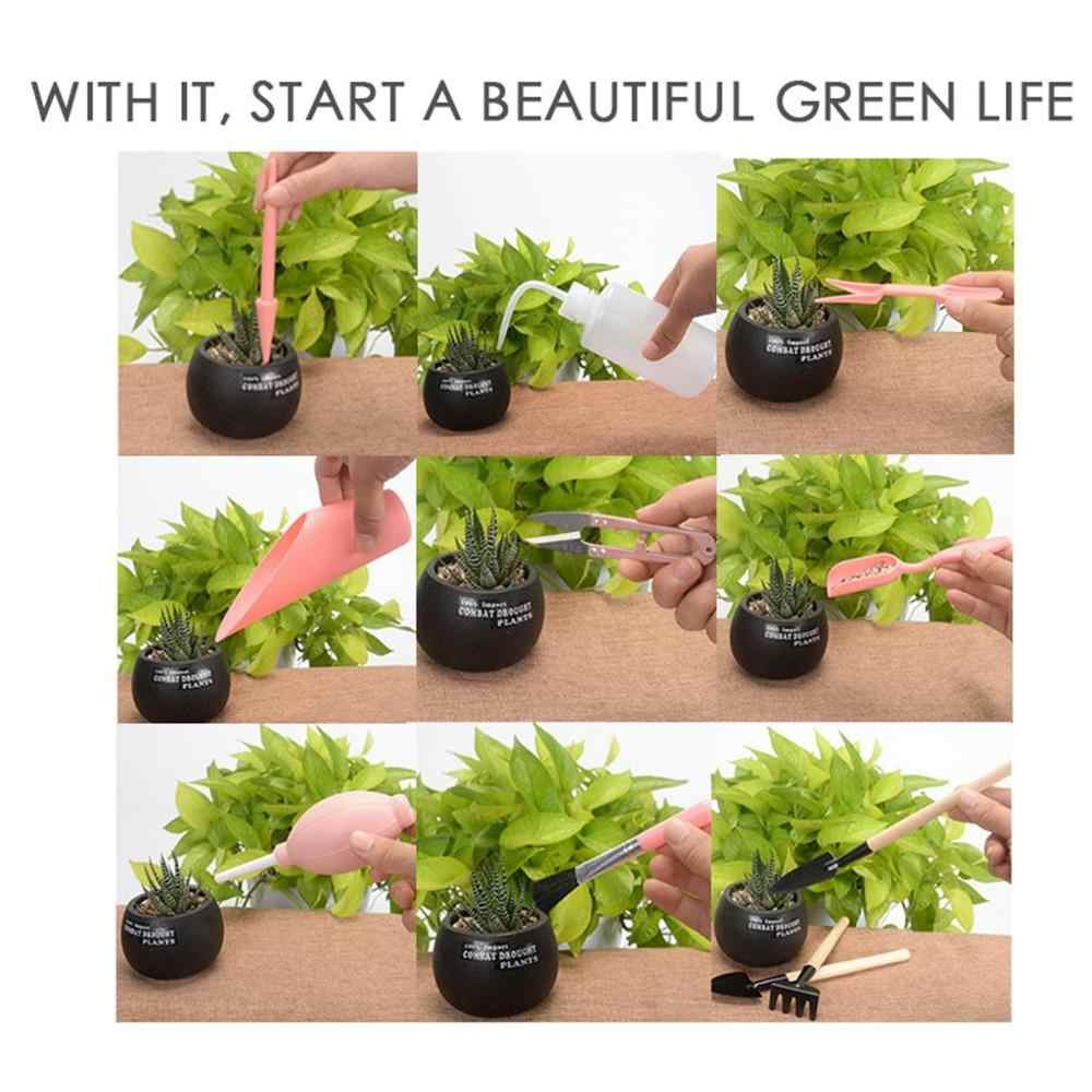 Succulents plant small tools gardening Planting 9 piece set