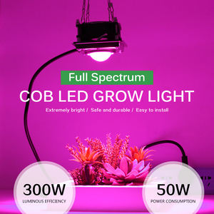Image 2 - 300W LED Grow Light Full Spectrum High Luminous Efficiency for Indoor Outdoor Hydroponic Greenhouse Plant Growth Lighting lamp