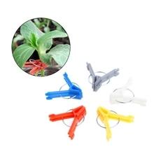 100Pcs Durable Plastic Grafting Clips Garden Vegetable Flower Plant Tree Vine