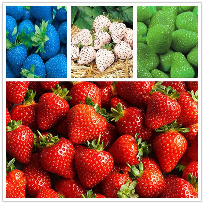 Promotion Plant Fruits Bath Salts Amazing Rainbow Strawberry Essence 100pcs AN-ZZ16-100