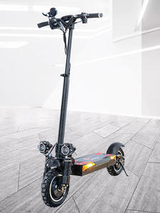 Electric Scooter JUESHUAI 48V