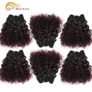 6Pcs/Lot Peruvian Curly Bundles Jerry Curl Double Drawn Human Hair Remy Funmi Hair T1B 30 99J Colored Hair Extension Htonicca(China)