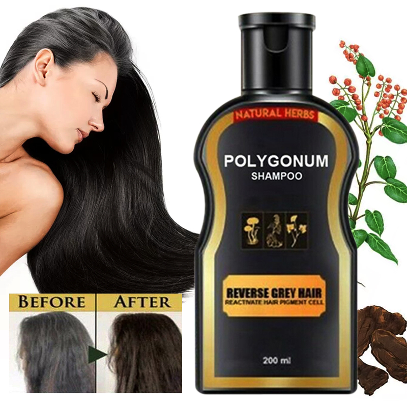 200ml Natural Darkening Shampoo Reverse Gray Hair Black Hair Coloring Anti-Dandruff Hair Care Shampoo