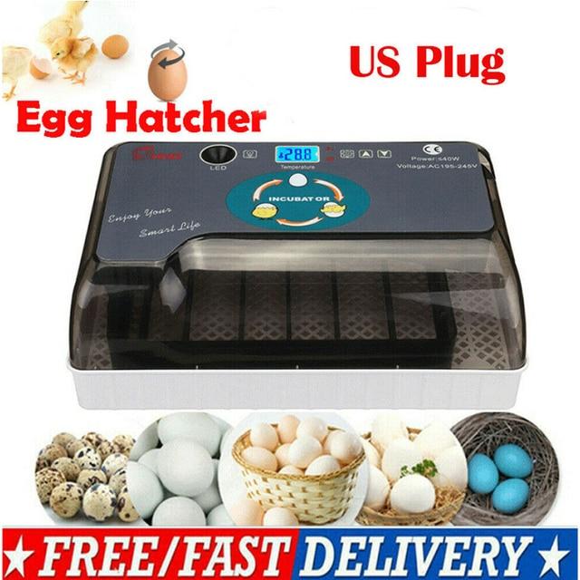 Household Full Automatic Incubator Brooder Farm Hatchery Machine 12 Egg Hatcher Chicken Egg Incubator Goose Bird Quail Brooder 1