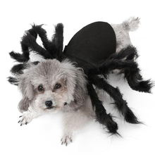 Cat Dog Halloween Spider Pet Dress Up Wing Clothes for Puppies Cats Decoration Cute Costumes