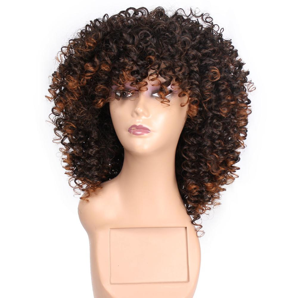 Long Synthetic Afro Kinkly Curly Wigs For Black Women 16 InchBlack Mixed Brown Colors Synthetic Hair African Hairstyle BY163