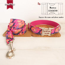 New Dog Leash In Leashes Pet Products In Dog Collar And Leash Pets Accessory For Large Dogs Supplies For Running And Training(China)