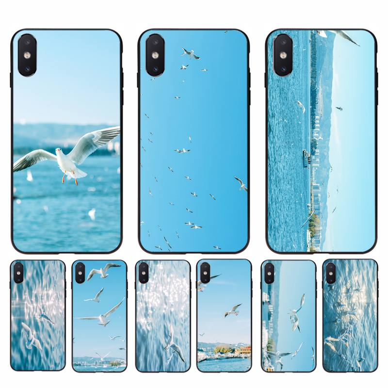 Babaite Seagull <font><b>Seabirds</b></font> summer seaside Soft Phone <font><b>Case</b></font> Capa for iphone 11 Pro Max X XS MAX 6 6s 7 8 plus 5 5S 5SE XR SE2020 image