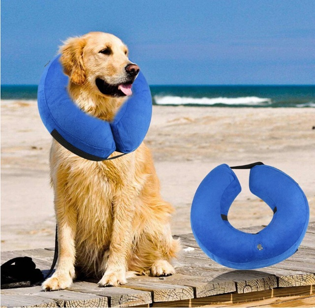 Pet Collar Dog Collar Cat Collar Industry PVC Inflatable Dog Anticollision Anti-Bite Anti-Tim Anti Grasping Circle