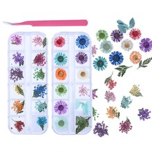 24 Patterns 3D Dry Flowers Stickers Real Dried Flower Nail Art Decoration Tips DIY Manicure Tools with Tweezer and Box(China)