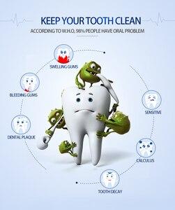 Image 3 - Elektryczna szczoteczka do zębów Sonic końcówki do szczoteczek dla dorosłych z IPX7 wodoodporny bezprzewodowy akumulator i 30 dni za pomocą czasu 6 Level chemiczna