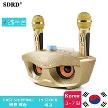 SD306 podwójny głośnik Bluetooth z 2 mikrofonami bezprzewodowymi rodzina zewnętrzna KTV mikrofon Stereo głośny dźwięk 20W SDRD Sd 306 zestaw głośników
