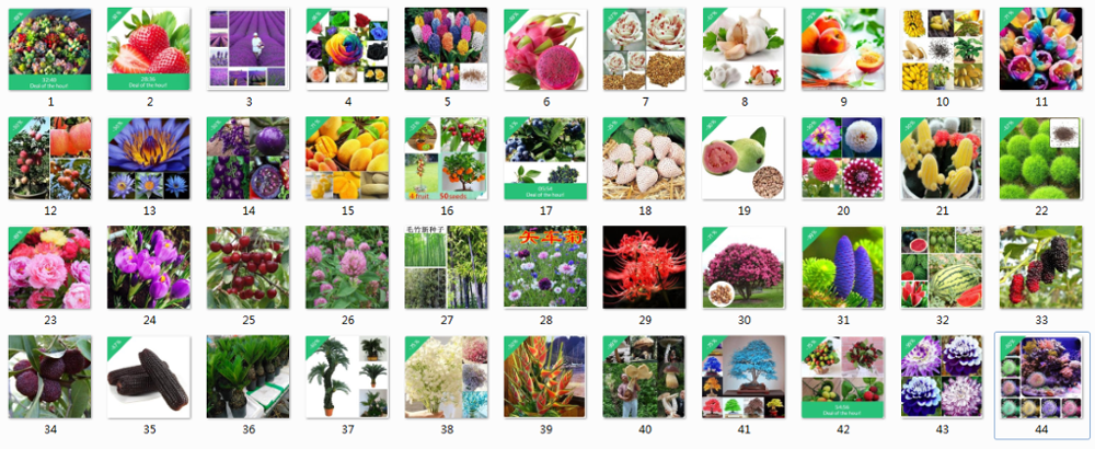 Vegetables Fruit Flower Plant Seeds Wholesale