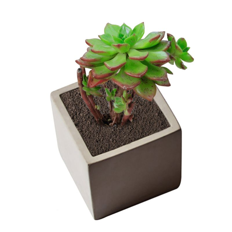 Cube Concrete Silicone <font><b>Mold</b></font> Planter <font><b>Flower</b></font> Pot Cement <font><b>Vase</b></font> Mould Craft Handmade Garden Decoration Tool D08F image