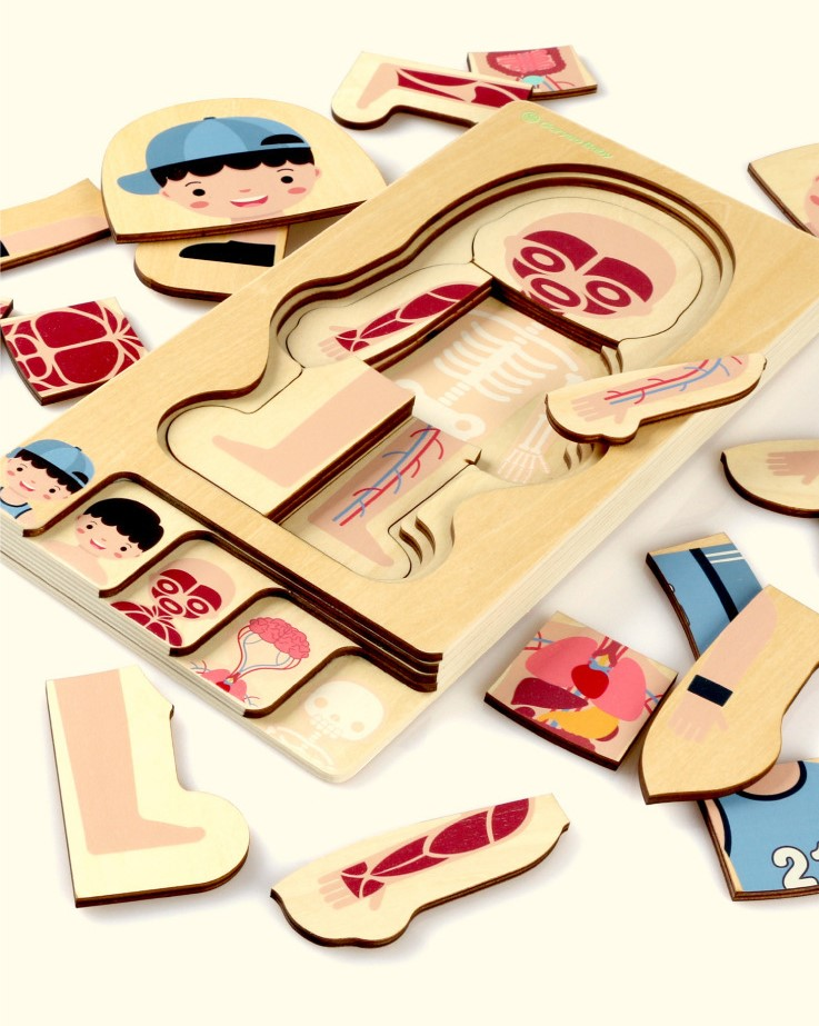 Montessori Educational Children Toys Wooden Human Body Puzzle Boys Girls Body Structure Children Puzzles Kids Toys